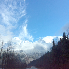 whistler-mountain-mist